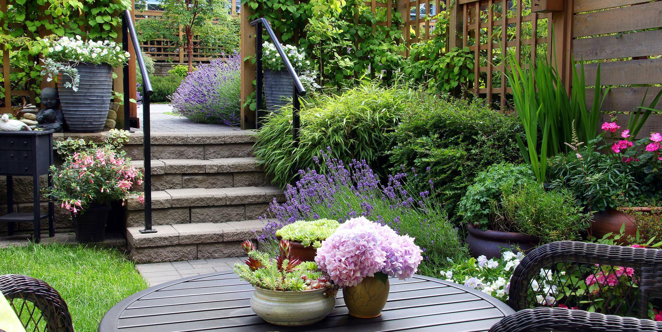 10 small garden design ideas from Gardeners' World's Joe Swift