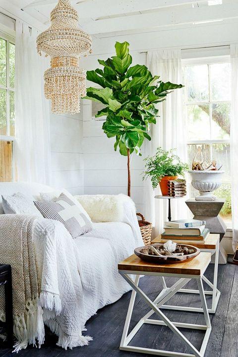 small living room white palette