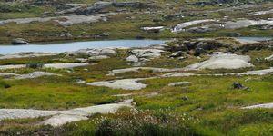 Small Ponds at Gotthard Pass, Switzerland