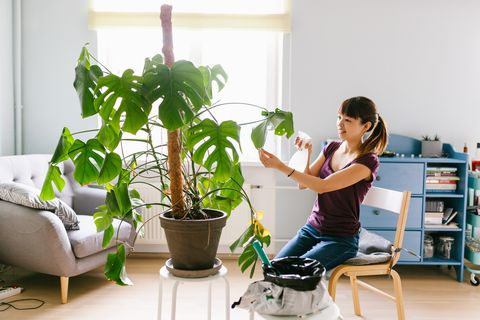 Smiling asian woman spraying water on the plant