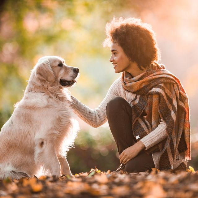 dogs are actually woman's best friend, a new study has found