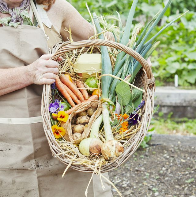 smiling woman holding basket of fresh vegetables in community garden