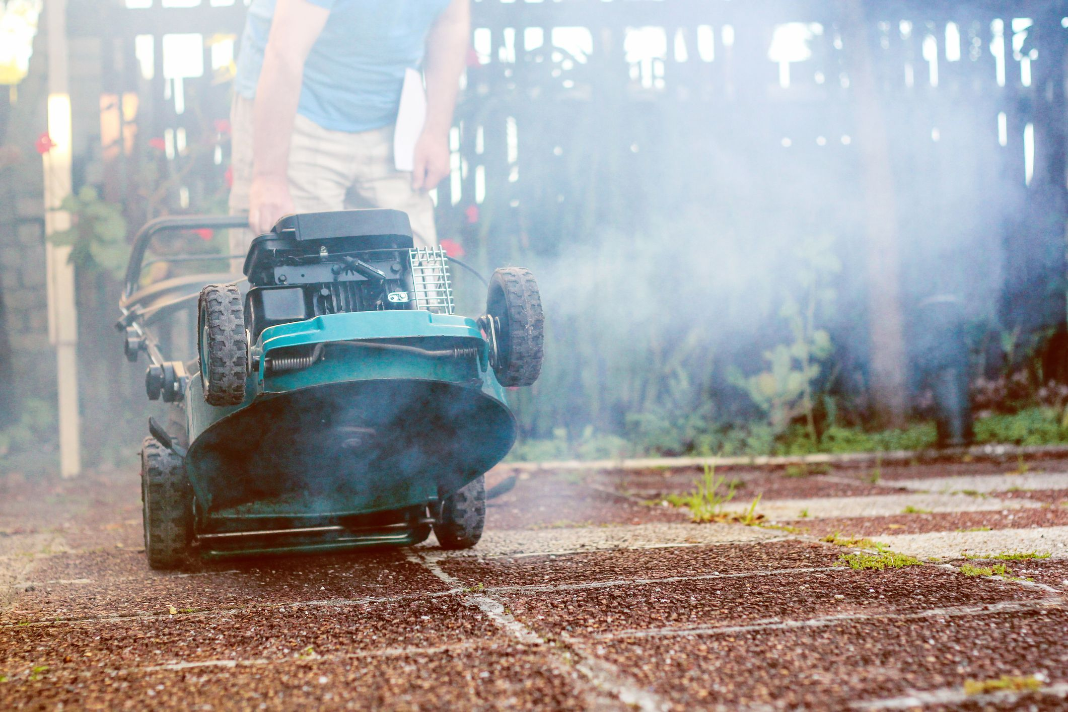 9 Biggest Lawn Care Mistakes (And How to Avoid Them)