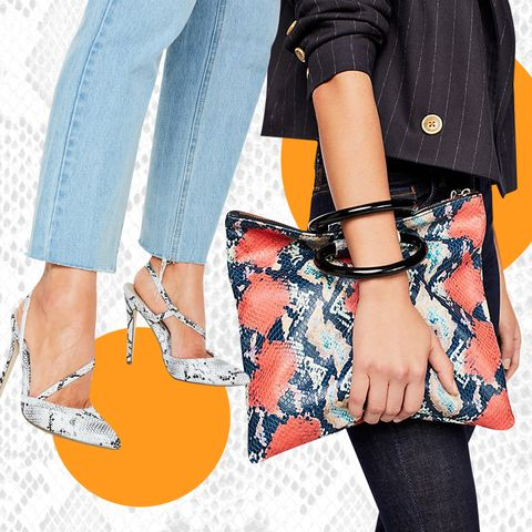 ICYMI, Snakeskin Is Here and You Should Get on Board or the World Will Pass You By