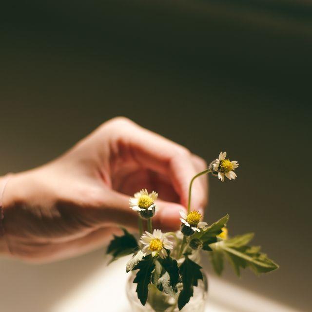 Flower, Hand, Bouquet, Plant, Flower Arranging, Floral design, Floristry, Cut flowers, Spring, Dress,