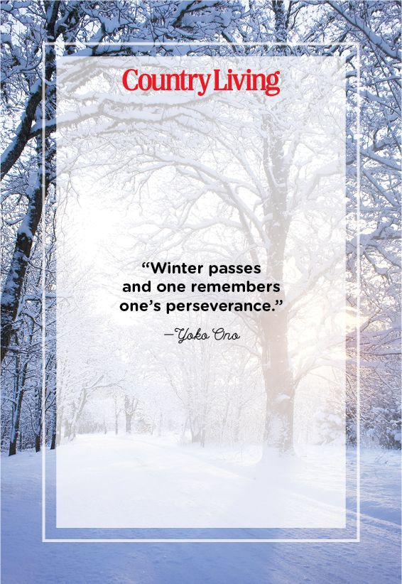 45 Best Winter Quotes Snow Quotes And Sayings You Ll Love And finally winter, with its bitin', whinin' wind, and all the land will be mantled with snow. 45 best winter quotes snow quotes and