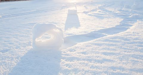 snow rollers photo