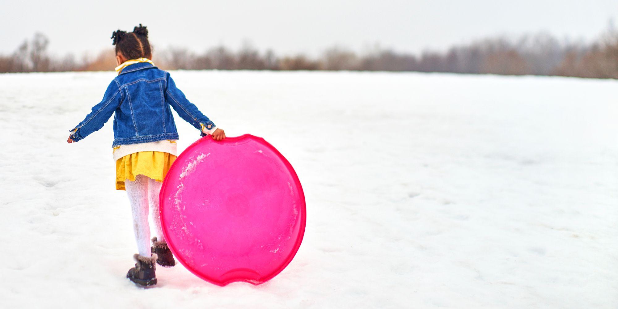 snow sleds best 2018