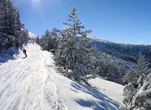 Borovets cheap ski holidays
