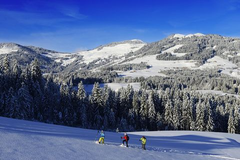 Snowshoe hikers, Gruberberg, Hopfgarten, Kitzbueheler Alps, Tyrol, Austria