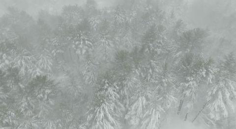 Atmospheric phenomenon, Freezing, Frost, Water, Winter, Haze, Blizzard, Ice, Snow, Winter storm,