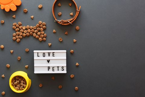 lightbox with the inscription love pets, food and accessories there is a place for text