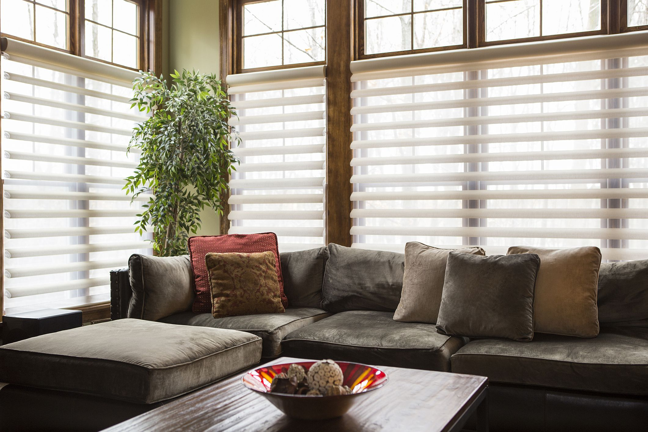 Best Picture Living Room Blinds