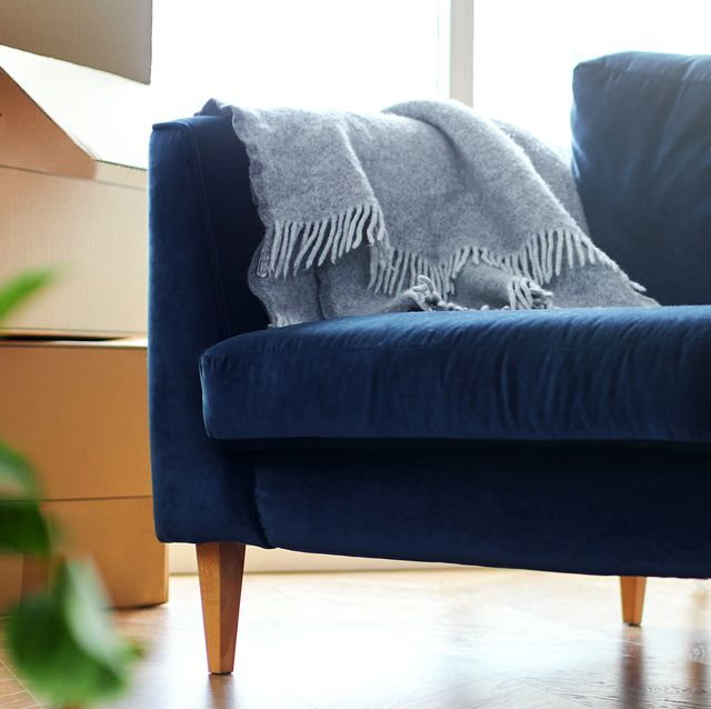 8 Best Sofa In A Box Brands Of 2021, What Do You Call A Single Sofa