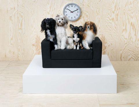 Camas para mascotas de IKEA, colección Lurvig