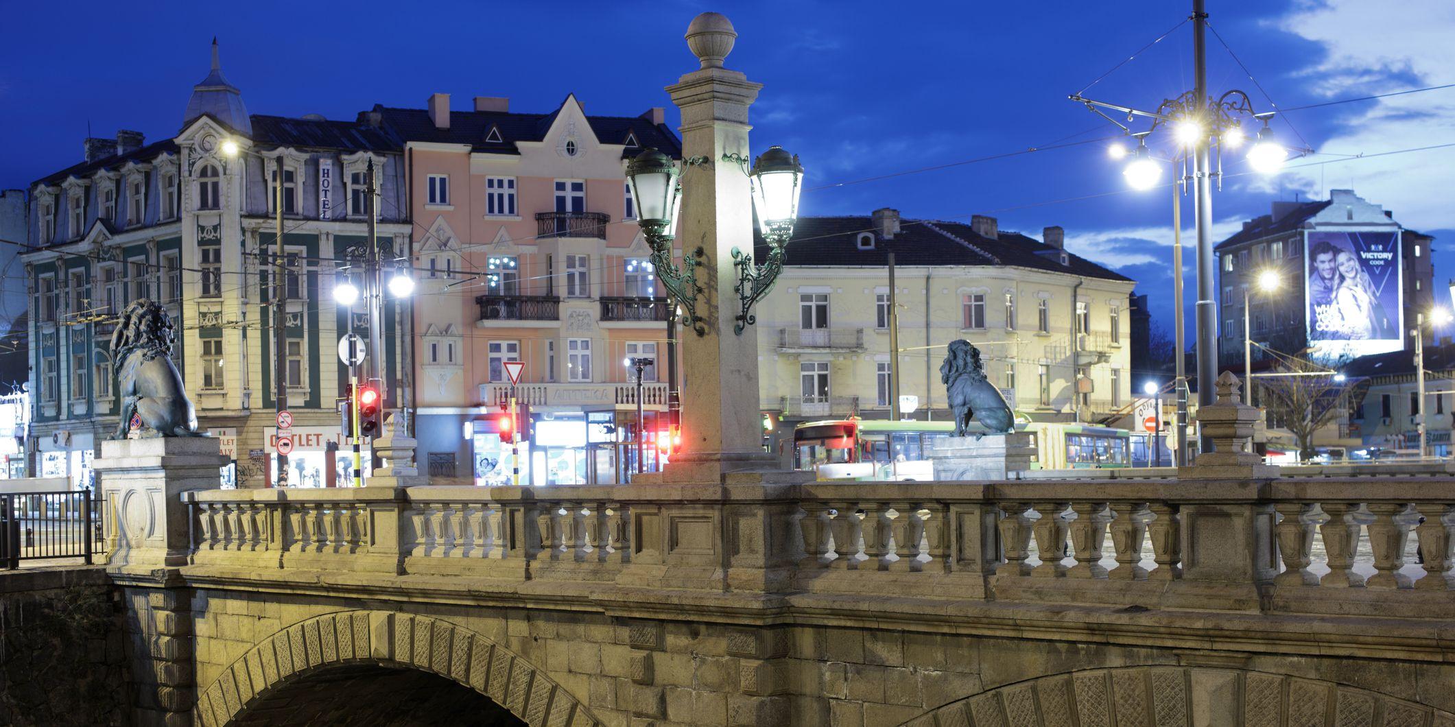 Sofia ponte dei Leoni