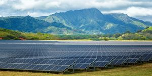Solar energy panels on field, Poipu, Kauai County, Hawaii, USA