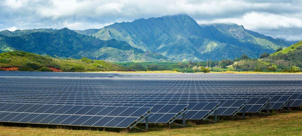 Năng lượng tái tạo sẽ chiếm 50% năng lượng của thế giới vào năm 2050