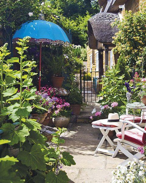 sombrilla azul en el jardín