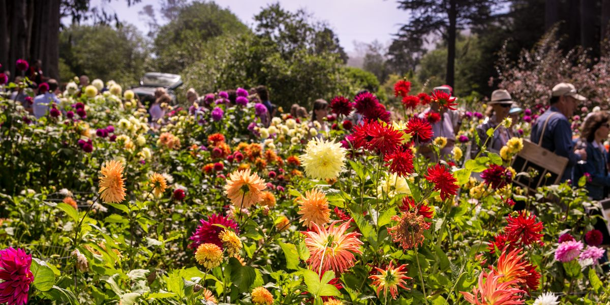 6 Inspiring California Gardens Beautiful California Gardens