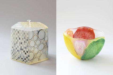 sophora