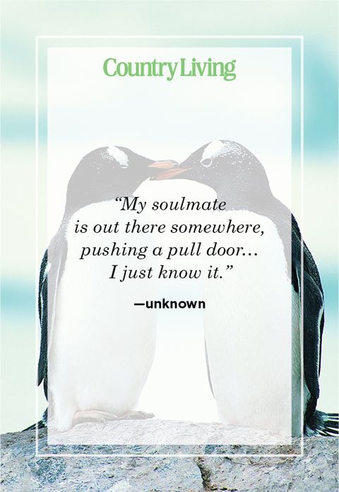 soulmate quote about pushing a pull door