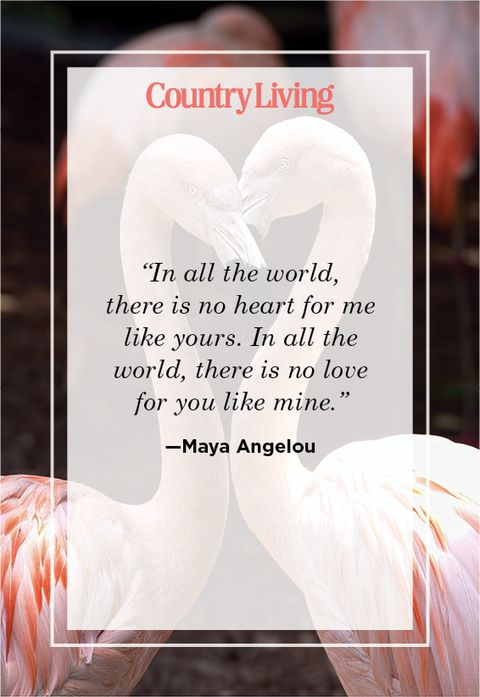 soulmate quote by Maya Angelou