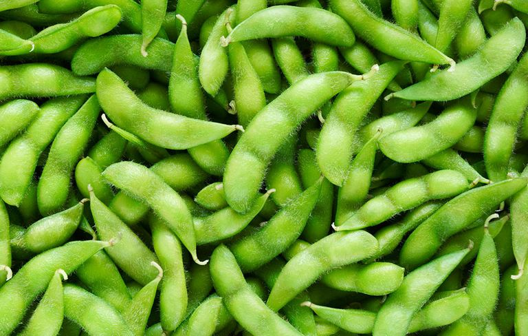Image result for soy beans