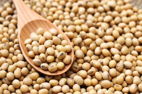 soybeans or cereals
