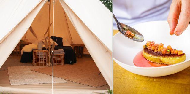 spaarne glamping tent met gerecht van taste of amsterdam