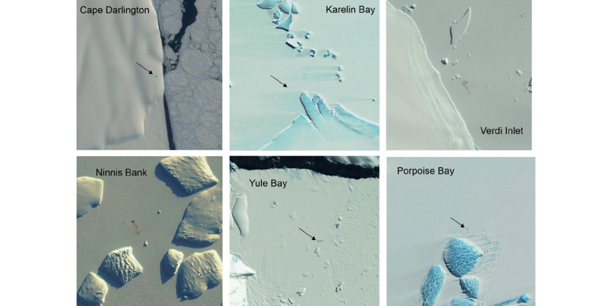 Scientists Just Discovered 11 New Emperor Penguin Colonies. From Space.