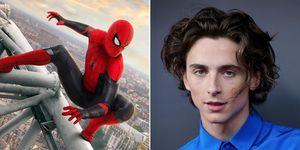 Spider-Man Timothee Chalamet