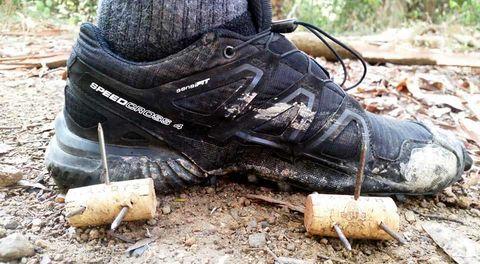 Footwear, Shoe, Hiking boot, Tree, Grass, Athletic shoe, Outdoor shoe, Soil, Adventure, Boot,