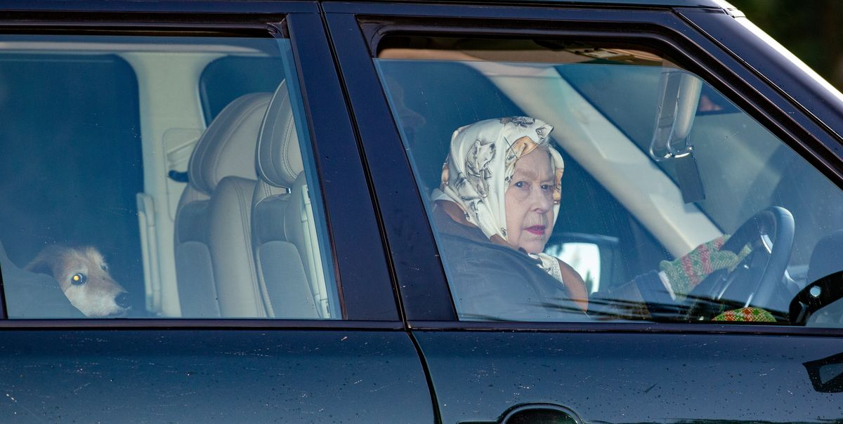 Queen Elizabeth II Rides Around Town with Her Dog and Dog-Print Headscarf - HarpersBAZAAR.com