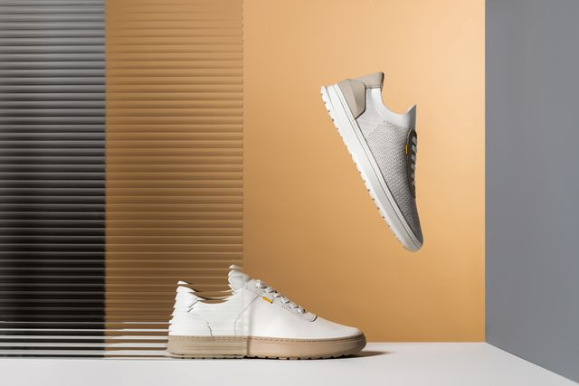 casca sneakers