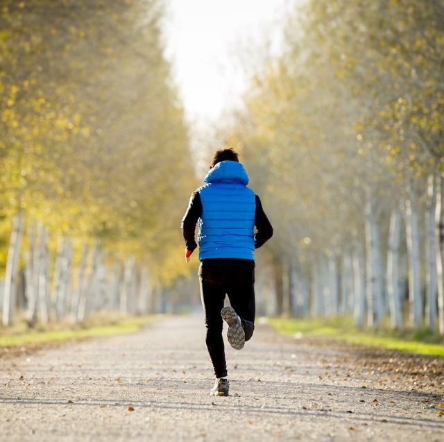 sport man running trail ground with trees under autumn sunlight