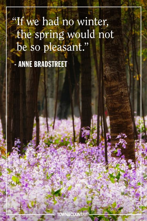 20 Best Spring Quotes - Inspirational and Funny Sayings ...