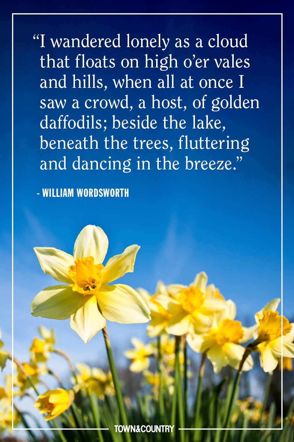 10 Best Spring Quotes Inspirational And Funny Sayings About Spring