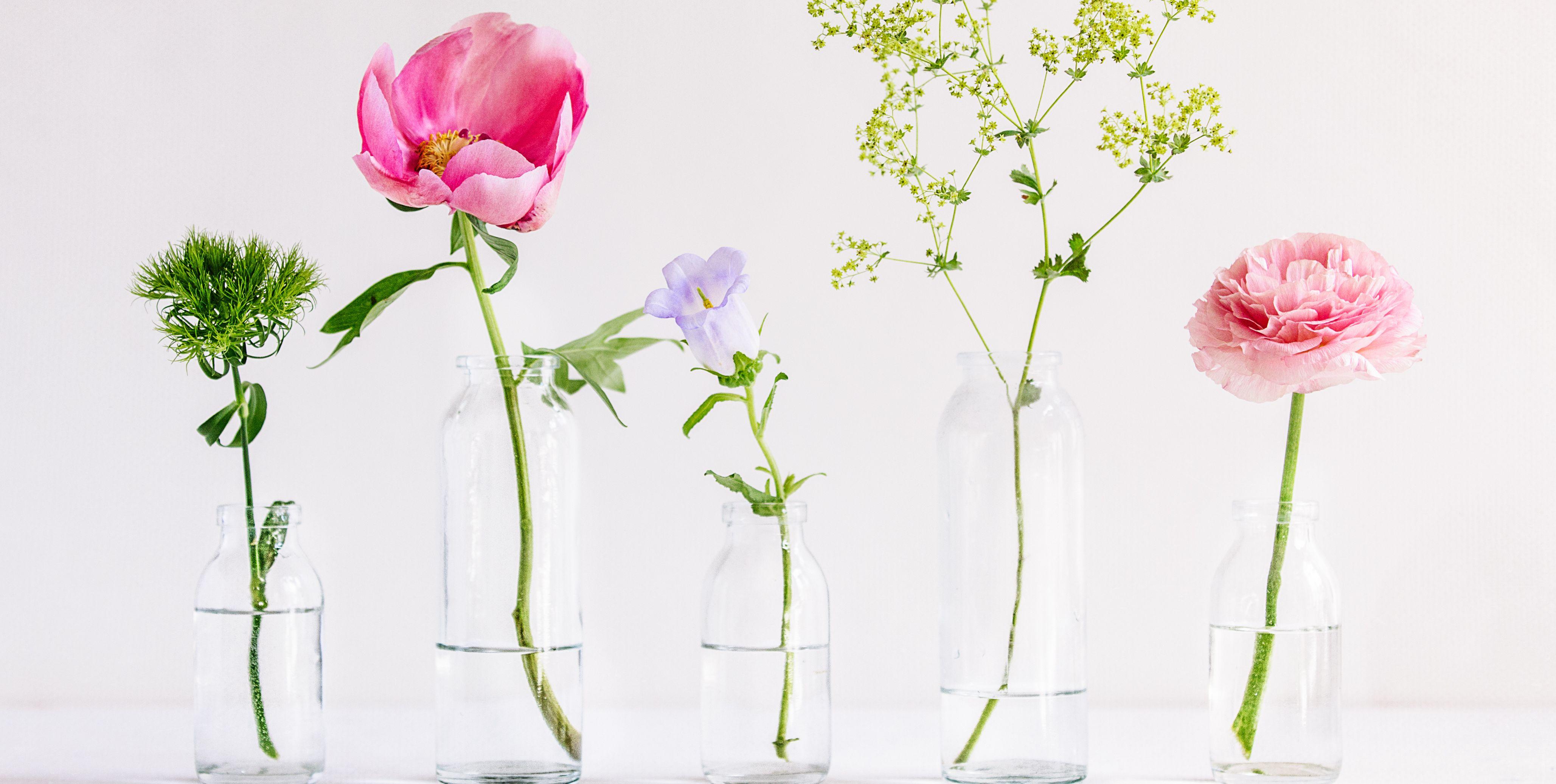 Spring flowers in glass vases