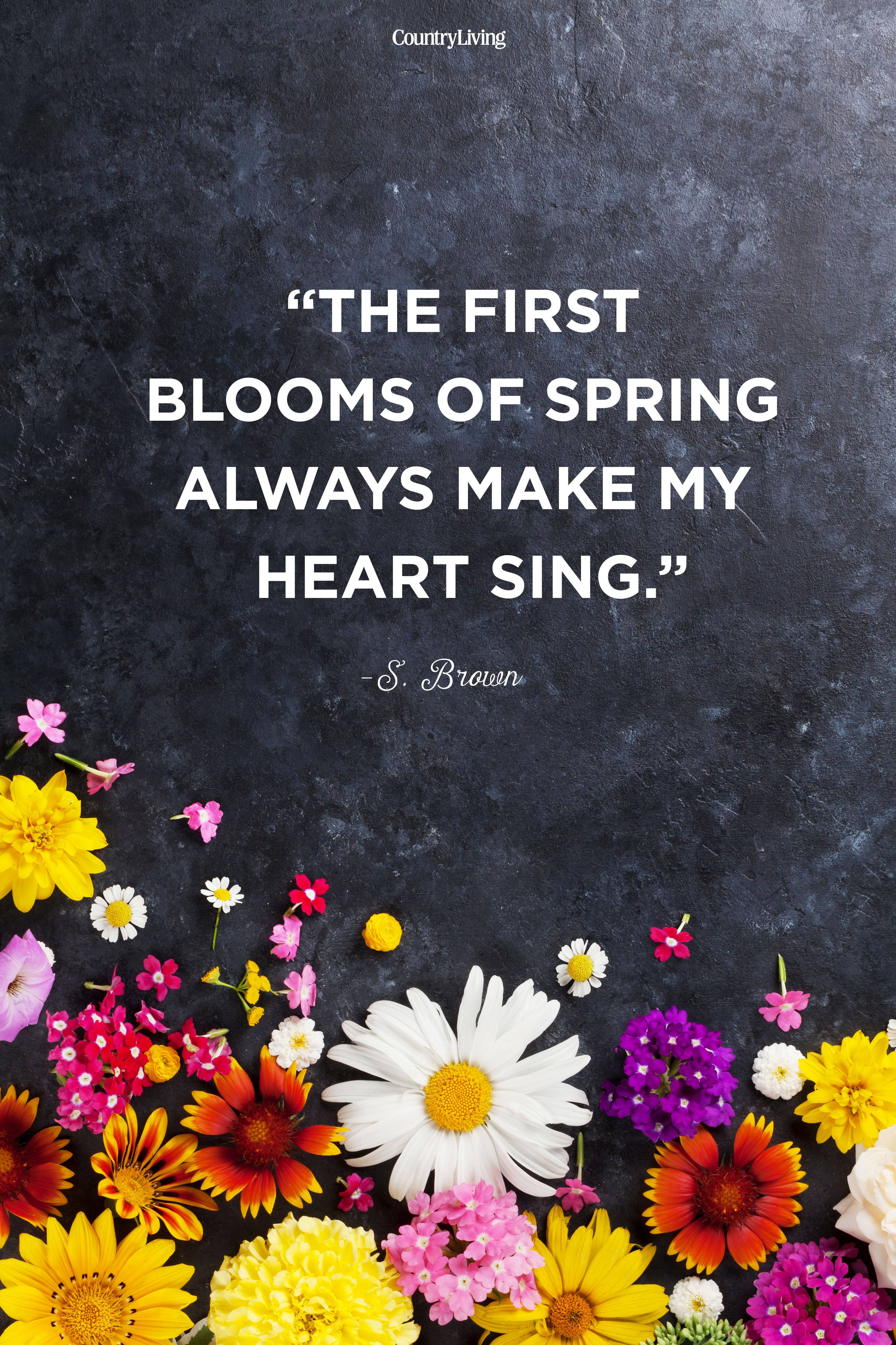 Spring Quotes Heart sing