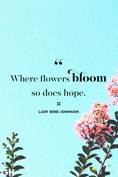 20 Happy Spring Quotes - Sayings About Spring and Flowers