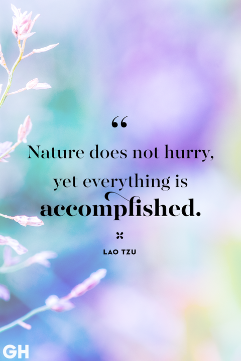 Spring Quotes Lao Tzu Nature Does Not Hurry