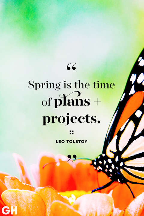 happy spring quotes   sayings about spring and flowers spring quotes leo tolstoy time of plans projects