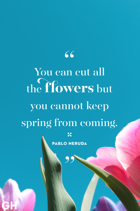 Flowers Quotes | 20 Happy Spring Quotes Sayings About Spring And Flowers