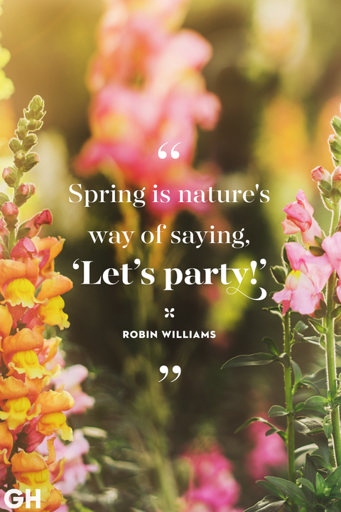 happy spring quotes   sayings about spring and flowers spring quotes robin williams nature party