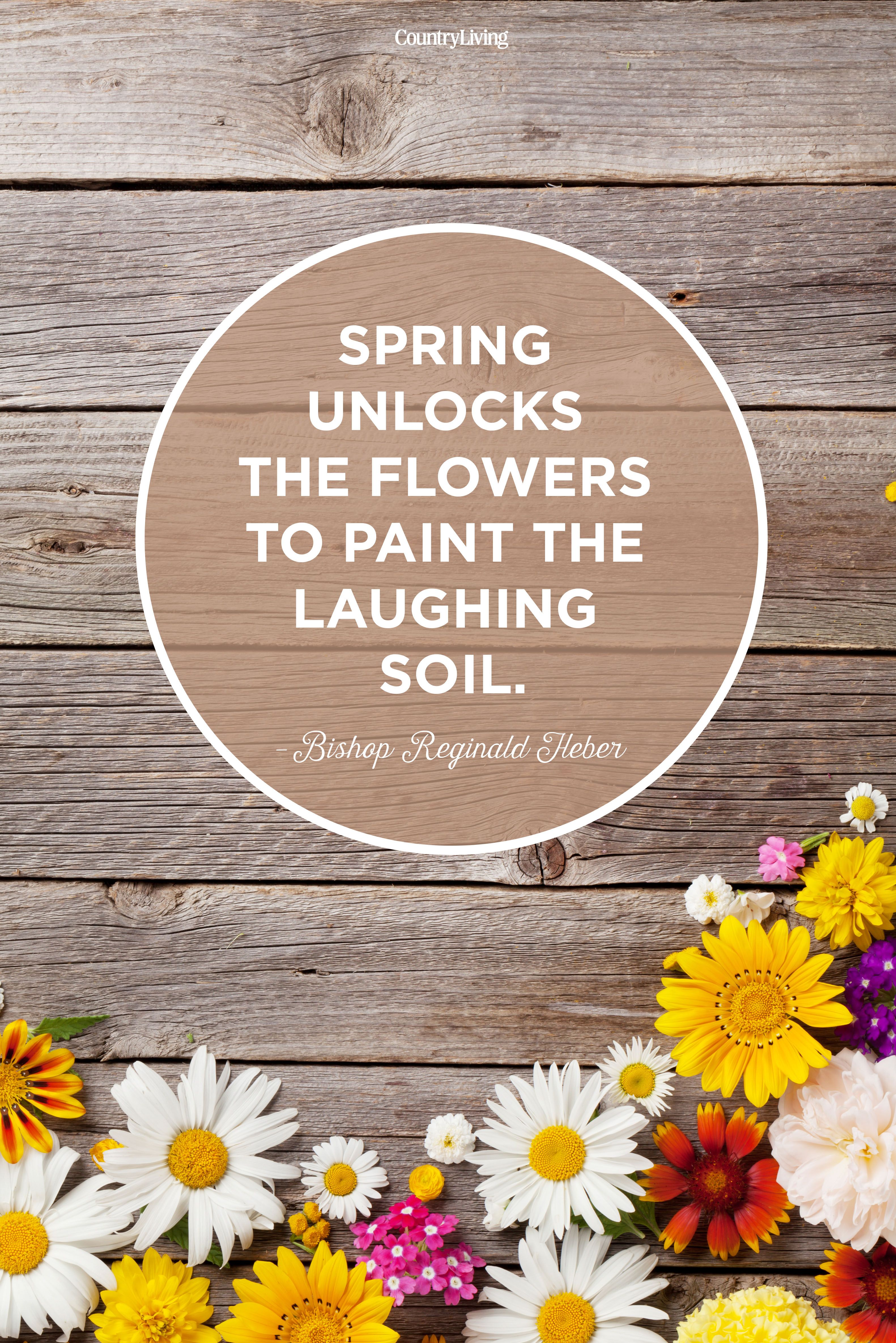 35 Best Happy Spring Quotes Motivational Sayings About Spring