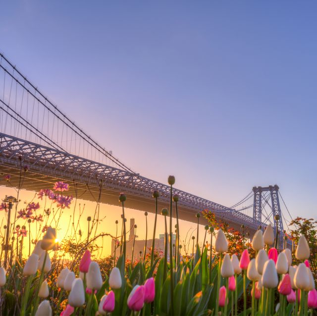 25 Things to Do in New York City on Mother's Day 2020 - Best Mother's Day Activities in NYC