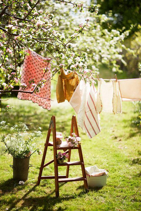 Photograph, Tree, Backyard, Spring, Dress, Linens, Grass, Branch, Textile, Yard,
