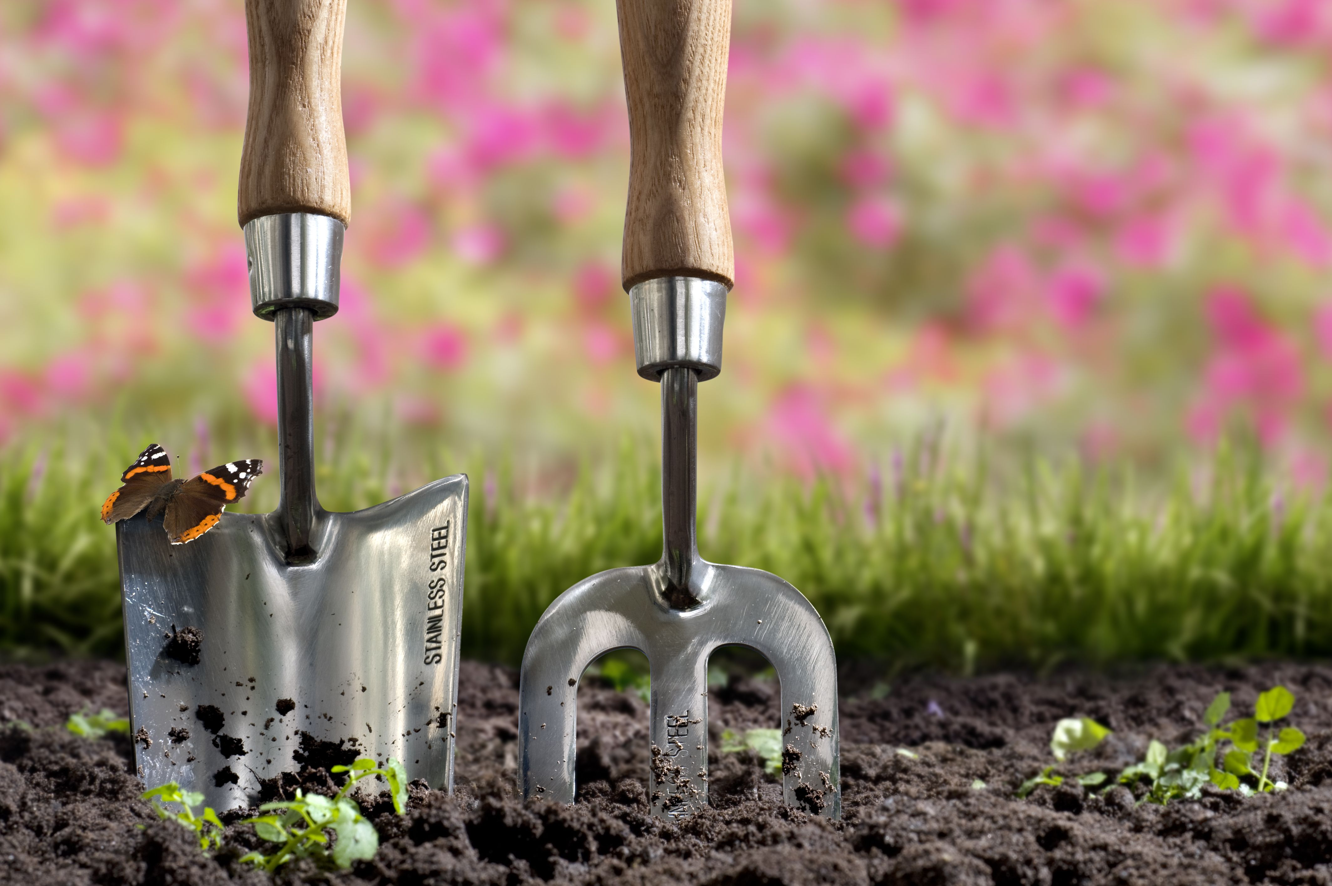 15 Easy Gardening Projects to Kick Off Spring