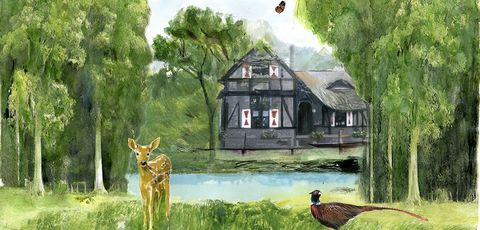 Watercolor paint, Natural landscape, Wildlife, Painting, Tree, Roe deer, Rural area, Illustration, House, Cottage,